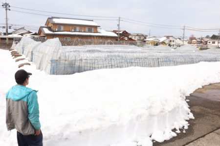 豪雪被害の支援プロジェクトにご協力お願いいたします